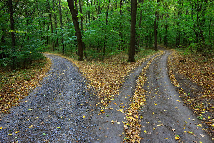 Smoothing the Path for Your Customers' Journey
