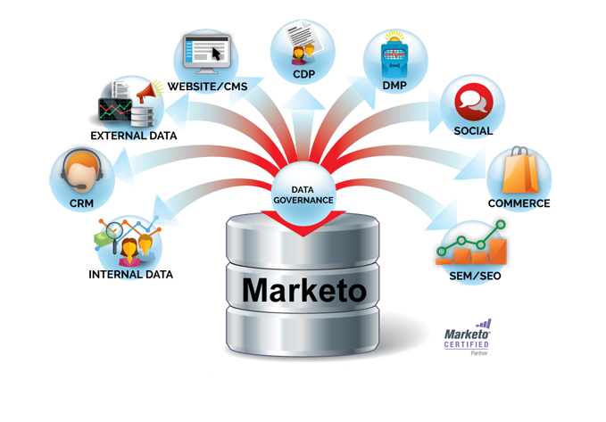 Marketo Software Implementation